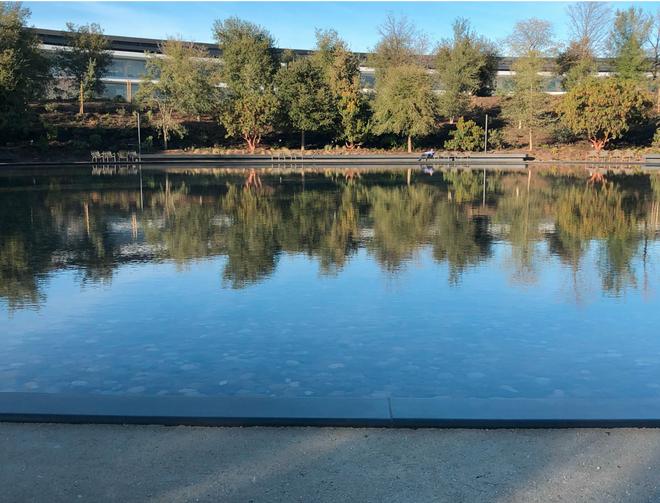 Một hồ nước lớn bên trong trụ sở để nhân viên có thể đi dạo.